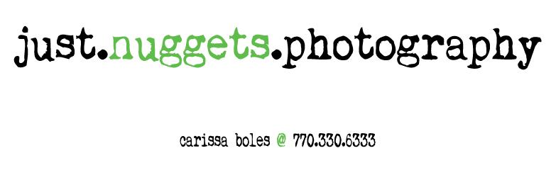 Justnuggetsphotography-LOGO2012