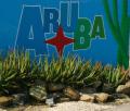 Aruba 2016-4